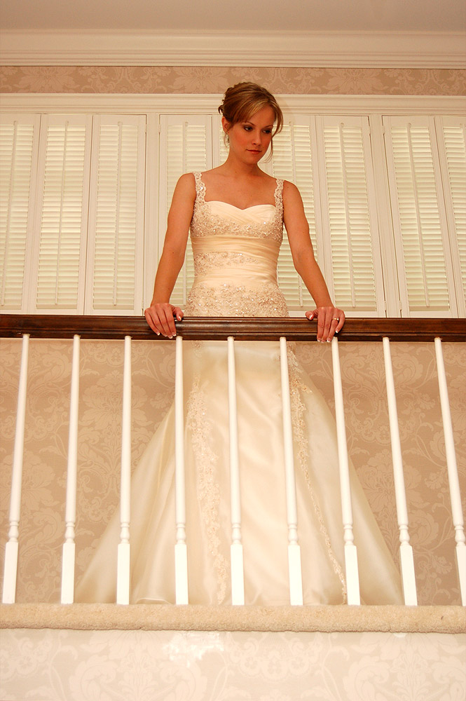 Bride Leaning on Rail